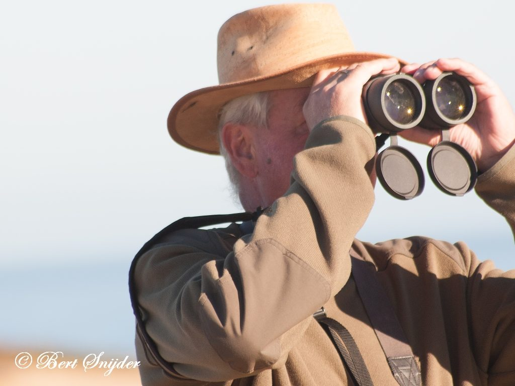 Bert Birdwatching Alentejo Portugal
