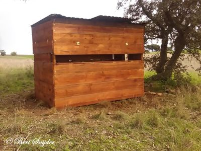 Bird Hide BSP4 Portugal