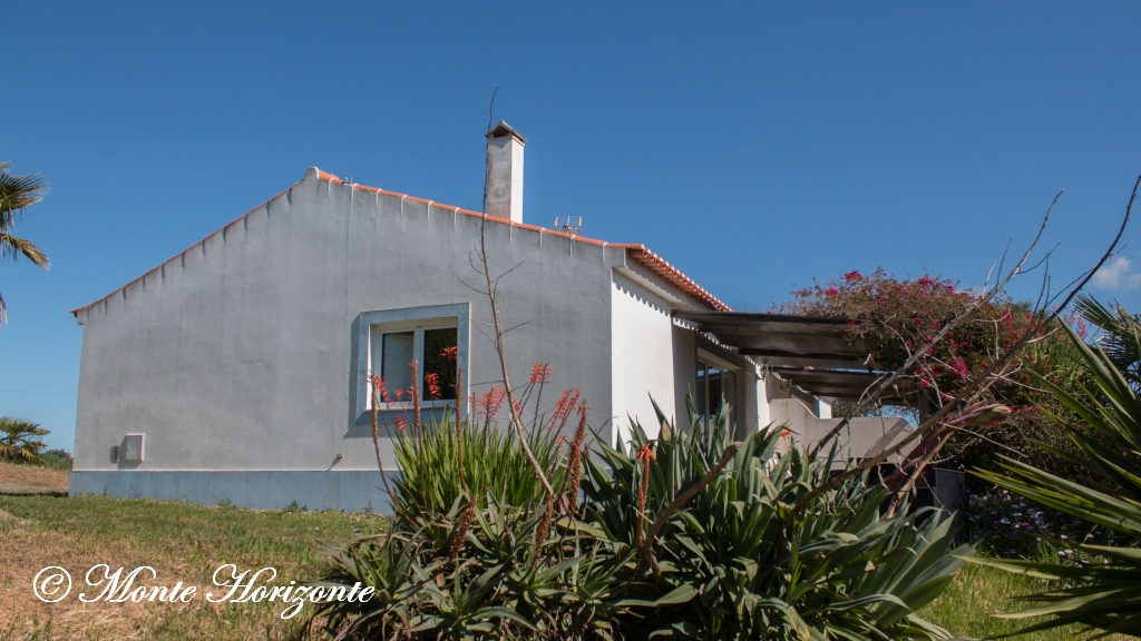 Bird Watching Holiday Casa Borboleta Portugal