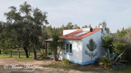 Casa Camélia Birding Holiday Portugal