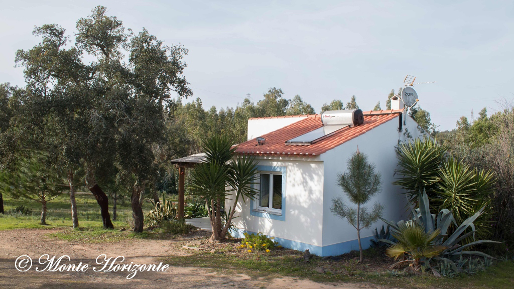 Casa Camélia Birding Holiday Portugal