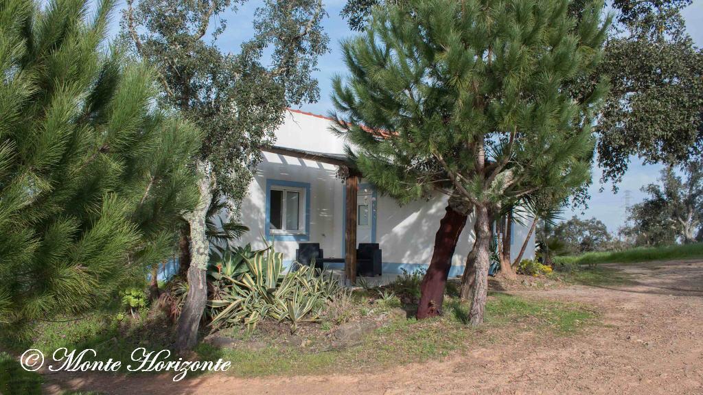 Monte Horizonte Casa-Camelia