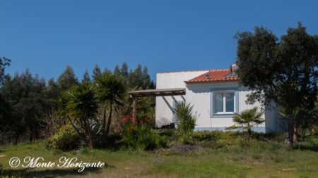 Bird Watching Holiday Casa Mimosa Portugal