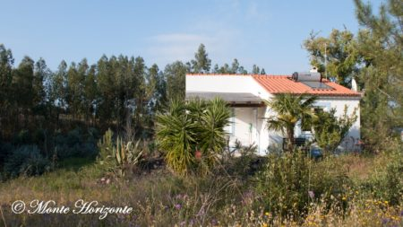 Monte Horizonte Casa-Oliveira
