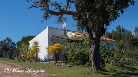 Monte Horizonte Casa-Sobreiro